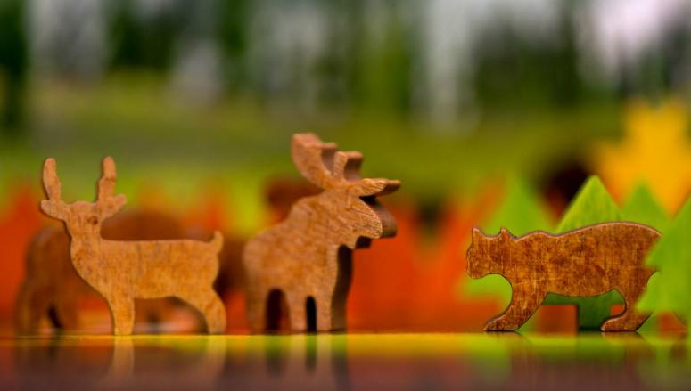 PARKS wildlife tokens